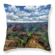 Pacific Grand Canyon Throw Pillow
