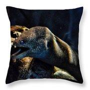 Pacific Moray Eel Throw Pillow