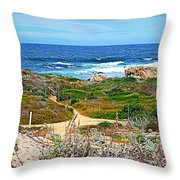 Pacific Pathway Throw Pillow