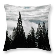 Pacific Pines Throw Pillow