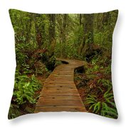 Pacific Rim National Park Boardwalk Throw Pillow