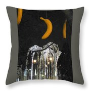 Pacific Science Gate Throw Pillow