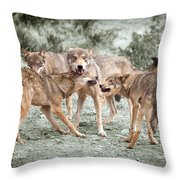 Pack Dispute Throw Pillow