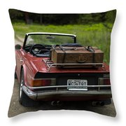 Packed Up To Travel Throw Pillow