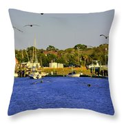 Paddle Boarders Vs Birds Throw Pillow