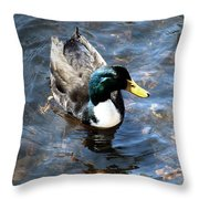 Paddling Peacefully Throw Pillow