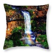 Paddy's Falls Throw Pillow