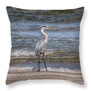 Padre Island National Seashore  Throw Pillow