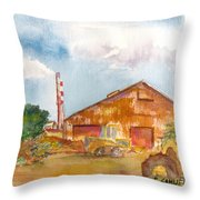 Paia Mill 3 Throw Pillow