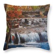 Paine Falls Throw Pillow
