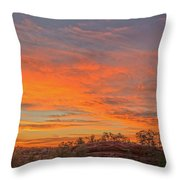 Painful Truth Is Better Than A Pleasant Lie.  Throw Pillow