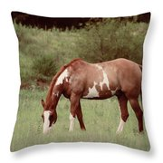 Paint Relaxing Throw Pillow