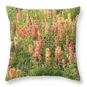 Paintbrush Beauties Throw Pillow