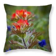 Paintbrush In The Mist Throw Pillow