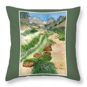 Paintbrush Trail Throw Pillow