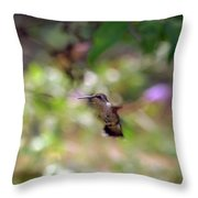 Painted Background Throw Pillow