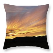 Painted Beautiful Throw Pillow