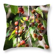 Painted Berries Throw Pillow