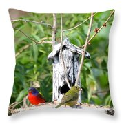Painted Buntings Throw Pillow
