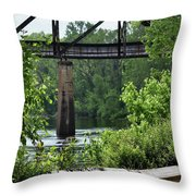 Painted Congaree Four Throw Pillow