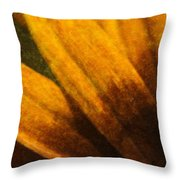 Painted Daisy Sunburst Throw Pillow