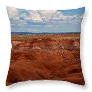 Painted Desert #4 Throw Pillow