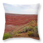 Painted Desert 6 Throw Pillow