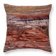 Painted Desert #7 Throw Pillow