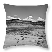 Painted Desert #9 Throw Pillow