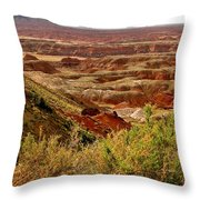 Painted Desert Panorama Throw Pillow