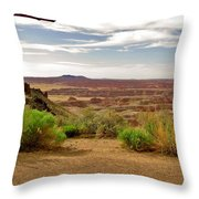Painted Desert Vista Throw Pillow