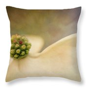 Painted Dogwood Throw Pillow