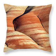 Painted Hills Stripes Throw Pillow