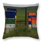 Painted Hives Throw Pillow