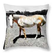 Painted Horse II Throw Pillow