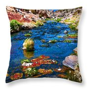 Painted Hot Creek Springs Throw Pillow