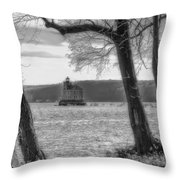 Painted Lady Light Throw Pillow