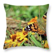 Painted Lady On Zinnia Throw Pillow