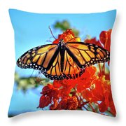 Painted Lady Throw Pillow by Robert Bales