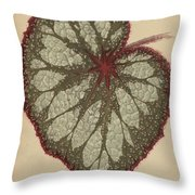 Painted Leaf Begonia Throw Pillow