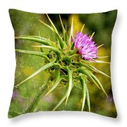 Painted Milk Thistle Throw Pillow