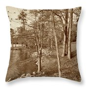 Painted Shore Camps In Sepia Throw Pillow