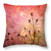 Painted Skies 2 Throw Pillow