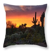 Painted Skies Of The Sonoran Desert Throw Pillow