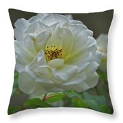 Painted Spring Camilia Throw Pillow
