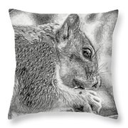 Painted Squirrel Throw Pillow