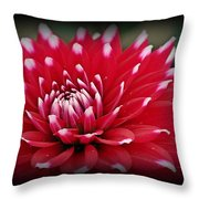 Painted Tips Throw Pillow