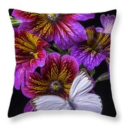 Painted Tongue With White Butterfly Throw Pillow