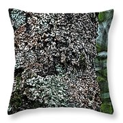 Painted Treebark Woodcut Throw Pillow