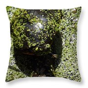 Painted Turtle Camouflague Throw Pillow
